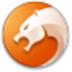 猎豹浏览器 V6.5.115.16534